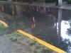 agua-e6dd469b538b10b0bac7585837bff3678af665d4